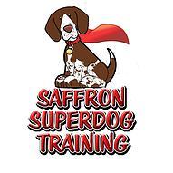 saffron-superdog-logo