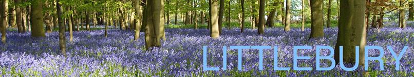 new littlebury banner logo